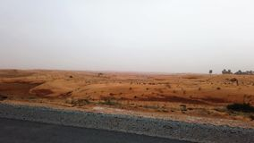 Dubai, United Arab Emirates - April 17, 2019: Highway scenery through the UAE desert during a sandstorm. After rain stock video footage