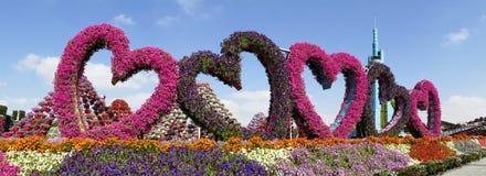 DUBAI, UNITED ARAB EMIRATES - 8 DE DICIEMBRE DE 2016: El jardín del milagro de Dubai es el jardín de flores natural más grande de Fotografía de archivo libre de regalías