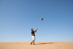 Dubai, United Arab Emirates - Dec 2, 2016. A falcon during a falconry training in the desert catching a lure. A falcon during a falconry training in the desert Royalty Free Stock Photography