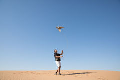 Dubai, United Arab Emirates - Dec 2, 2016. A falcon during a falconry training in the desert catching a lure. A falcon during a falconry training in the desert Royalty Free Stock Photos