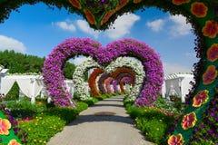DUBAI, UNITED ARAB EMIRATES - DECEMBER 8, 2016: Dubai Miracle Garden is the biggest natural flower garden in the world.  stock photo