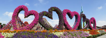 DUBAI, UNITED ARAB EMIRATES - DECEMBER 8, 2016: Dubai Miracle Garden is the biggest natural flower garden in the world. Royalty Free Stock Photography