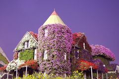 A huge flowerbed in the shape of cottage house miracle garden Stock Photography