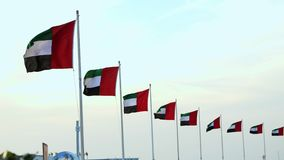 DUBAI, UNITED ARAB EMIRATES, UAE - NOVEMBER 20, 2017: flags of UAE blowing in the wind.  stock video footage