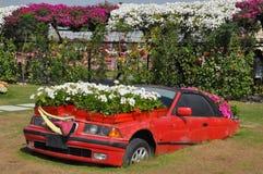 Dubaj cudu ogród w UAE obraz stock