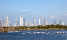 Dubaj linia horyzontu z falmingos w przedpolu Obraz Stock