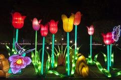 Dubaj ogródu łuna Obraz Stock