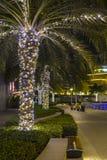 DUBAJ, UAE - Marzec 8th 2019: Dubaj Marina palmy iluminować przy nocą zdjęcia stock