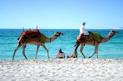 Dubaju na plaży Zdjęcia Royalty Free
