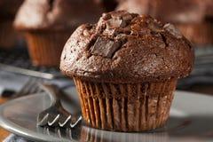 Dubbel choklad Chip Muffin Royaltyfri Foto