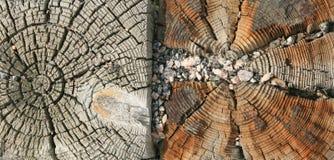 Dubbel doorstane houten korrel Stock Foto's