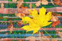 Dubbel exponering av gula den handgjorda lönnlöv- och indiertextilfilten Royaltyfri Fotografi