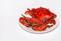 Dubbel Gekookte Krabben stock foto