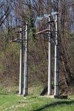 Dubbel konkret linje för elström två nytto- poler med täta keramiska och exponeringsglasisolatorer som omges med oklippt gräs och fotografering för bildbyråer