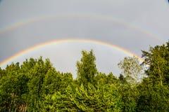 Dubbel regnbåge över grön skog arkivbilder