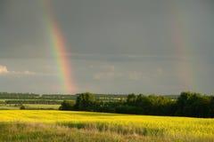 Dubbel regnbåge över skogen och fältet arkivbilder