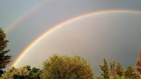 Dubbel regnbåge över träd Arkivbilder