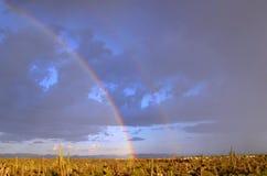 Dubbel regnbåge på den Baja halvön Royaltyfria Foton