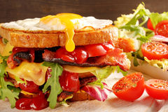 Dubbel smörgås med det baconost och ägget Royaltyfri Foto