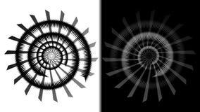Dubbel spiral för BW Arkivfoto