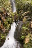 dubbel vattenfall Royaltyfria Bilder
