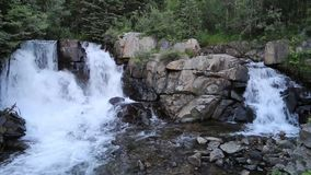 Dubbel vattenfall i skogen stock video