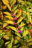 Dubbele blootstelling van bloemenvoorwerpen Stock Afbeeldingen