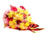 Dubbele blootstelling van een boeket van gele chrysanten en rode rozen Stock Foto