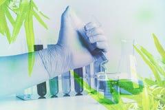 Dubbele blootstellings Kleine installaties in reageerbuis voor biotechnologie stock afbeelding