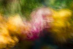 Dubbele kleurenuitbarsting. Royalty-vrije Stock Foto's