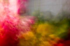 Dubbele kleurenuitbarsting. Stock Fotografie
