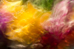 Dubbele kleurenuitbarsting. Royalty-vrije Stock Afbeeldingen
