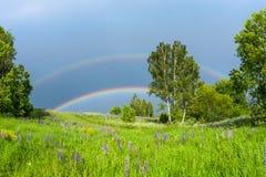 Dubbele regenboog in de blauwe bewolkte hemel over groene die weide en een bos door de zon in de kant van het land wordt verlicht stock afbeeldingen
