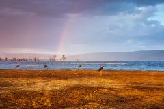 Dubbele regenboog op bewolkte hemel over meer in Afrika stock afbeeldingen