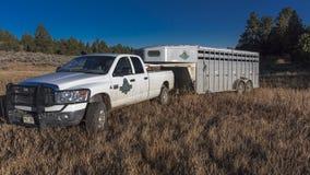 Dubbele Shoe Cattle Company, de Schuur van de Paardaanhangwagen, Ridgway, Colorad Royalty-vrije Stock Fotografie