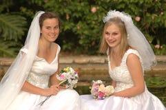 dubbelt bröllop Royaltyfria Bilder