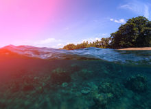 Dubbelt landskap med havet och himmel Undersea sikt av korallreven Tropisk ökust Arkivbild