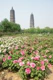 dubbelt pagodatempel Fotografering för Bildbyråer