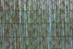 Dubbelt staket - textur royaltyfri bild