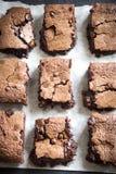 Dubbla chokladnissen Arkivbilder
