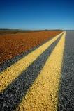 dubbla linjer yellow Arkivfoto