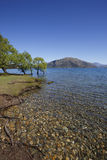 Dublin Bay, Lake Wanaka, NZ Stock Photography