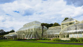 Dublin Botanic Garden stock footage
