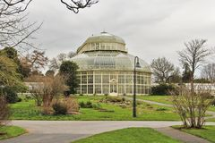 Dublin Botanical Garden in Ireland. A big glasshouse in Dublin Botanical Garden, Glasnevin, Ireland surrounded by trees stock images
