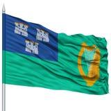 Dublin City Flag sur le mât de drapeau Photographie stock