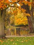Dublin City Park im Herbst Lizenzfreie Stockfotos