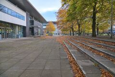 Lots of fallen leaves beside outdoor stairs on campus of University College Dublin