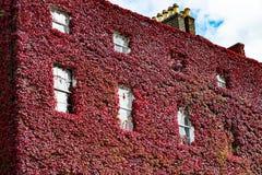DUBLIN, IRLAND - 31. AUGUST 2017: Stadt von Dublin Ireland Lizenzfreies Stockbild