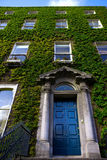 Dublin ivy covered house irish Stock Image