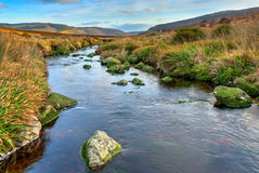 Dublin Mountains Lansdcape Stock Photography
